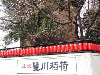 エドヒガン桜 (1).JPG